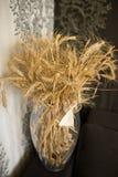 Пшеница в вазе Стоковая Фотография RF
