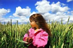 пшеница девушки стоковые изображения rf