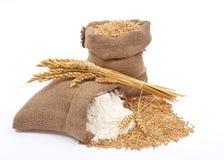 пшеница зерна муки Стоковое Изображение