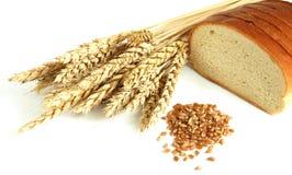 пшеница зерна Стоковое Фото