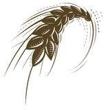 пшеница иконы Стоковое Изображение RF