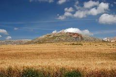 пшеница Испании teba поля замока Стоковые Изображения RF
