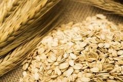 Пшеница и овсы на мешковине Стоковые Изображения