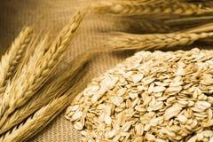 Пшеница и овсы на мешковине Стоковое Изображение RF