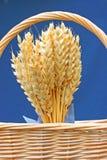 пшеница корзины Стоковое Фото