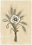 пшеница маков букета ретро Стоковое Изображение RF