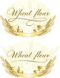 пшеница муки конструкции Стоковые Изображения