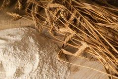 пшеница муки Стоковая Фотография