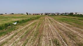 пшеница накошенная полем акции видеоматериалы