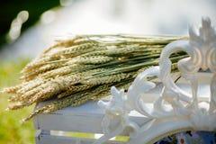 Пшеница на белой деревянной коробке Стоковое фото RF