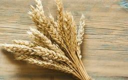 Пшеница на деревянной деревенской предпосылке Взгляд сверху с космосом экземпляра Стоковые Фотографии RF