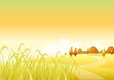 Пшеница осени стоковая фотография