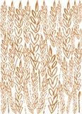 пшеница предпосылки Стоковое фото RF