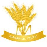 пшеница предпосылки Стоковые Изображения RF