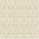 пшеница предпосылки Стоковая Фотография