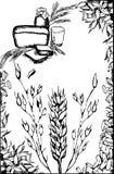 пшеница рамки Стоковое Изображение