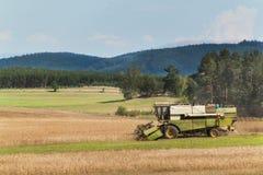 Пшеница сбора жатки зернокомбайна зрелая на ферме в чехии вал времени земной хлебоуборки сада яблока возмужалый Культивирование з Стоковая Фотография