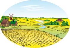 пшеница села поля Стоковые Фотографии RF