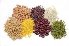 пшеница семени Стоковое фото RF
