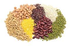 пшеница семени Стоковое Фото