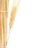 пшеница стога Стоковая Фотография