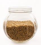 пшеница текстуры зерна конструкции предпосылки Стоковая Фотография