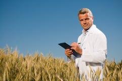 пшеница техника поля стоковое изображение