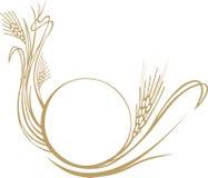 пшеница ушей состава Стоковое Фото