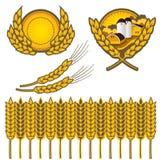 пшеница иллюстрация штока