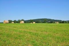 пшеница bale Стоковые Изображения