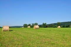 пшеница bale Стоковые Изображения RF