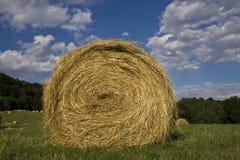 пшеница bale Стоковое Изображение RF