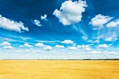 Пшеничное поле и голубой пасмурный взгляд рая от высоты Стоковое Фото