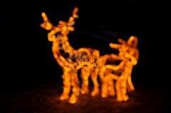 Пыжики в желтых светах Нового Года электрических Стоковое Фото