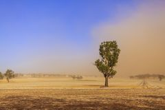 Пыльная буря †Нового Уэльса «около Temora Стоковые Изображения
