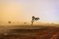Пыльная буря †Нового Уэльса «около Temora Стоковая Фотография