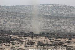 Пыльная буря в саванне Стоковые Фото