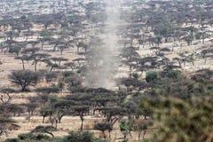 Пыльная буря в саванне Стоковая Фотография