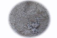 пыль Стоковое Изображение RF