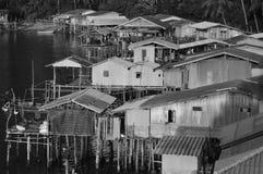 Пыхченное живое рыболова деревни halcyon Стоковые Фото