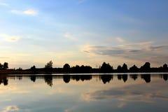 Пышная природа лета на пруде в июле Деревья, поле и пруд в лучах заходящего солнца Стоковые Фото