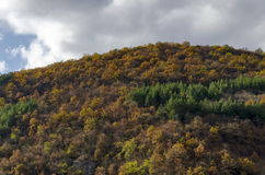 Пышное Lakatnik трясет полностью высоту, дефиле реки Iskar, провинцию Софии Стоковая Фотография RF