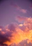Пышные красочные облака в небе вечера Яркие, розовые облака в небе на заходе солнца Красивое skyscape вечера Конспект, pu Стоковая Фотография