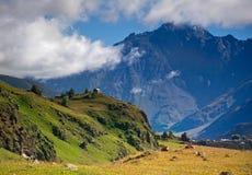 Пышный ландшафт горы Стоковые Фото