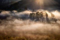 Пышный восход солнца в Transylvania County в Румынии с туманом и солнце излучают стоковое фото rf