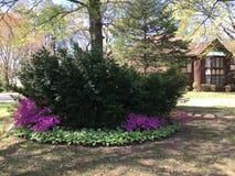 Пышный зеленый особняк любит свойство в Anne Arundel County в Мэриленде стоковое фото rf