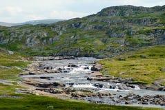 Пышный ландшафт лета плато и национального парка горы Hardangervidda в Норвегии Стоковые Фото