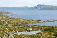 Пышный ландшафт лета плато и национального парка горы Hardangervidda в Норвегии Стоковое Изображение RF
