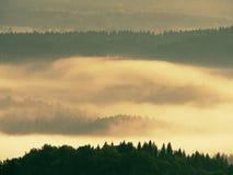 Пышный тяжелый туман в ландшафте Туман осени сметанообразный в ландшафте Стоковая Фотография RF