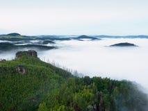 Пышный тяжелый туман в ландшафте Туман осени сметанообразный в сельской местности Холм увеличенный от тумана, Стоковые Фотографии RF